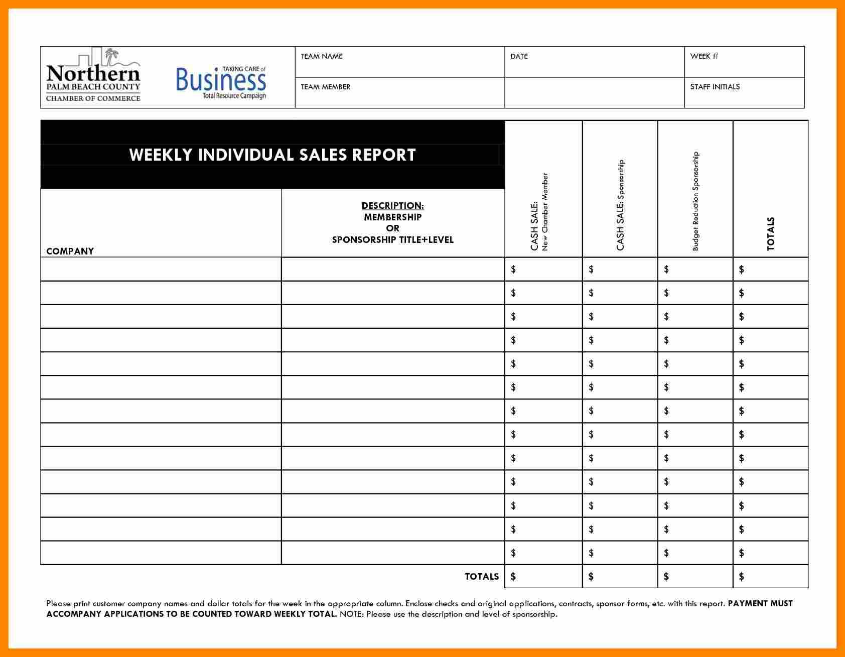 Microsoft Excel Daily Sales Report Template