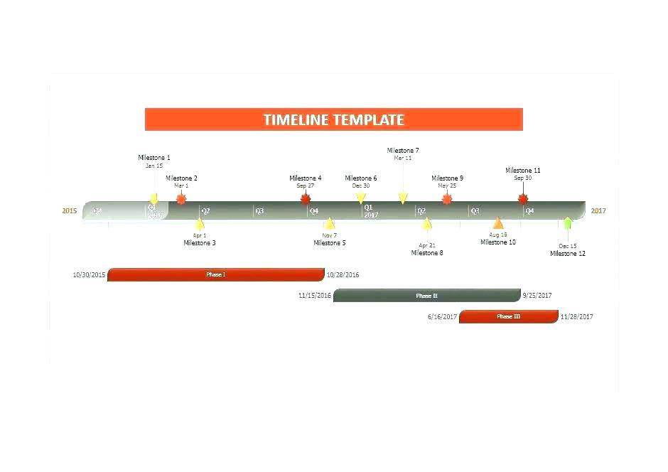Microsoft Office 2010 Project Timeline Template