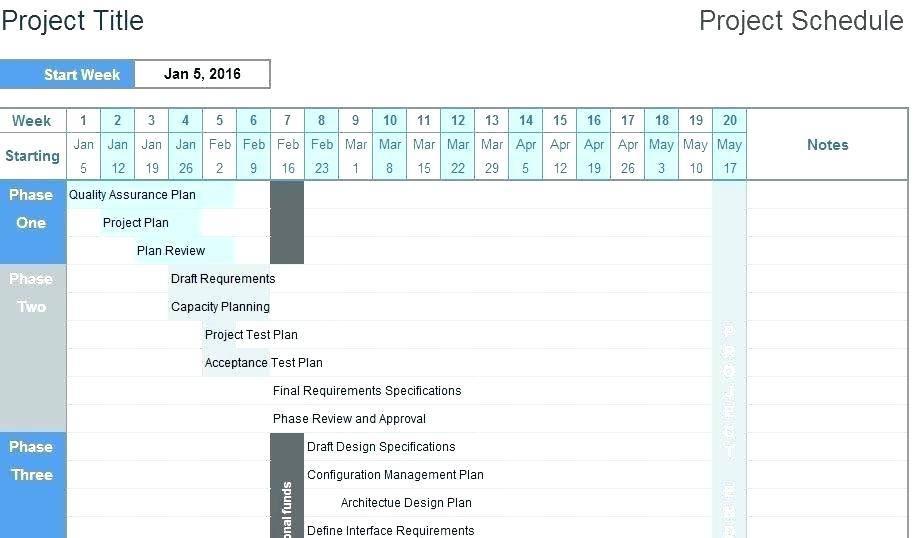 Microsoft Project Timeline Format