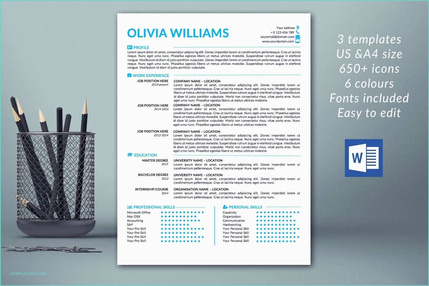 Modern Resume Template Word 2007