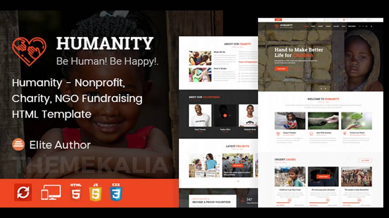 Ngo Website Template Themeforest Html