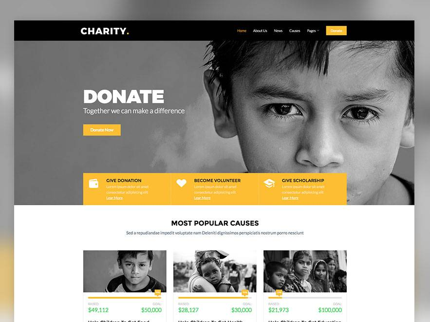 Ngo Website Templates