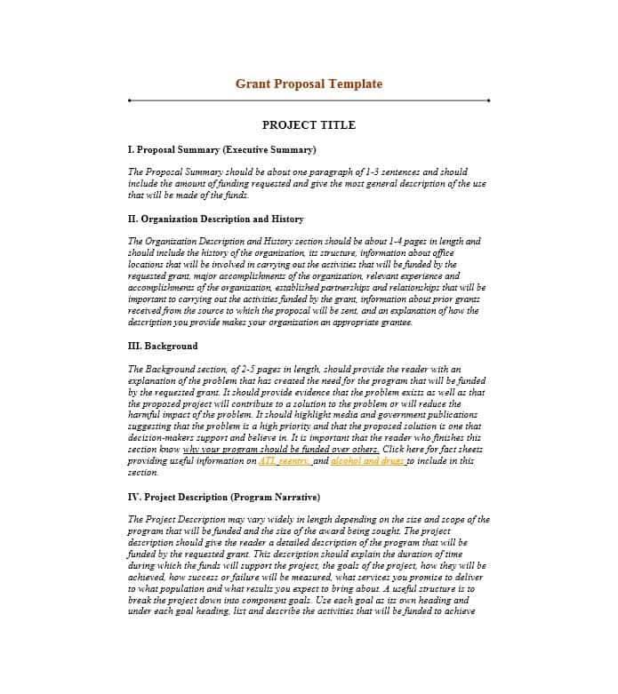 Non Profit Grant Proposal Example