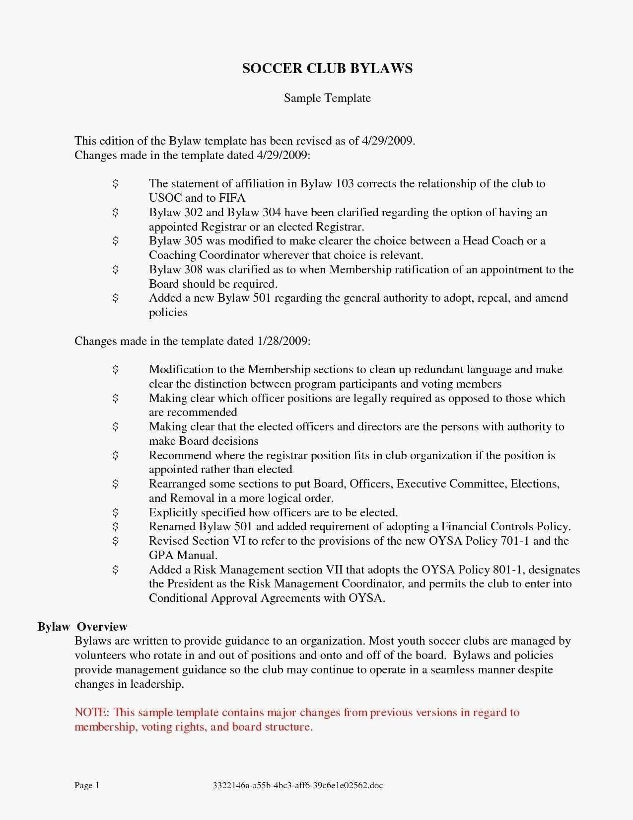 Not For Profit Bylaws Template Florida