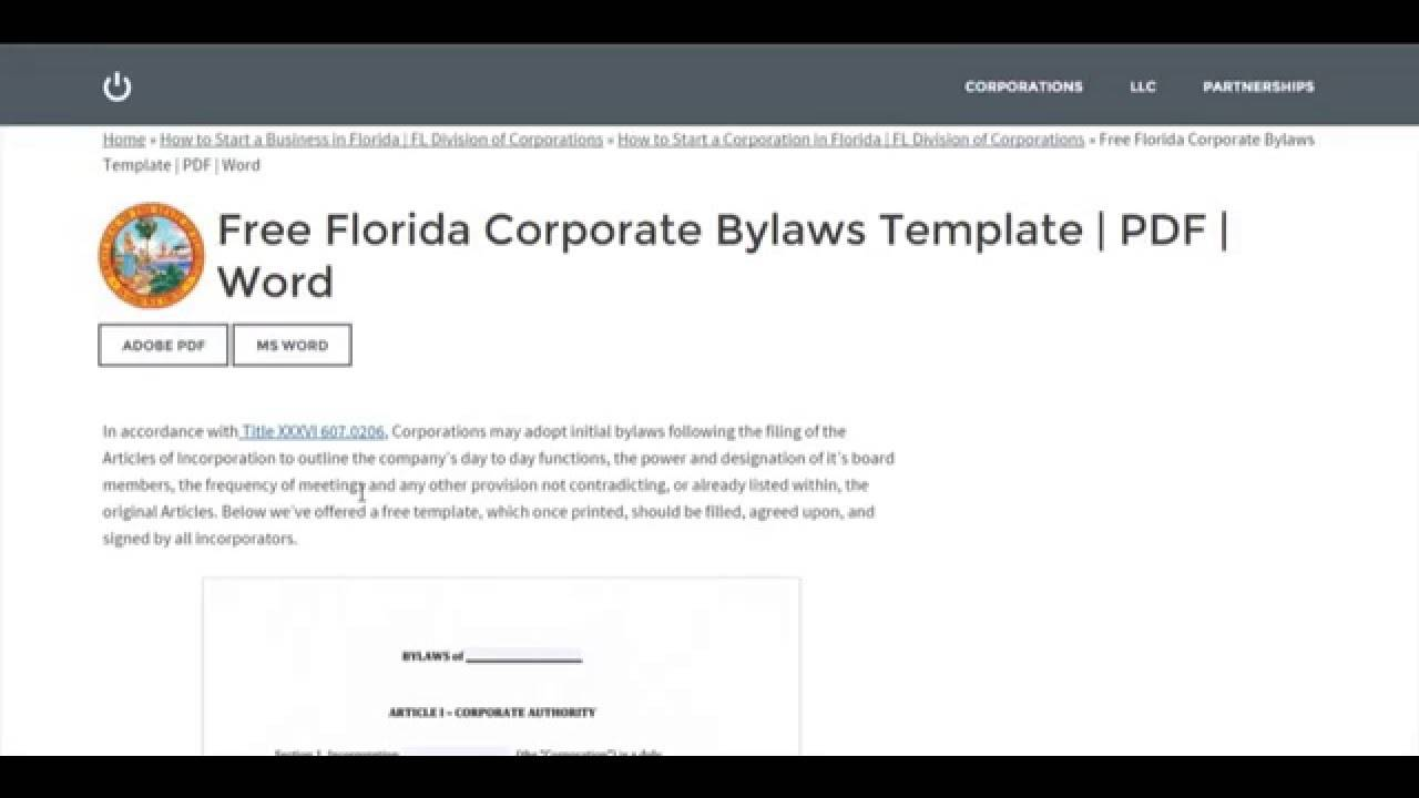 Not For Profit Bylaws Template