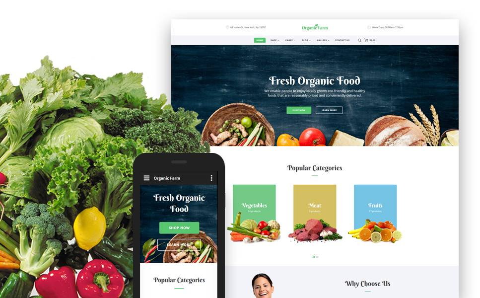 Organic Food Website Templates