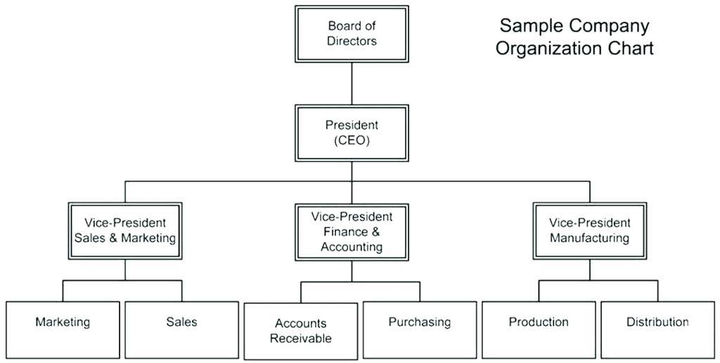 Organisational Chart Template Word