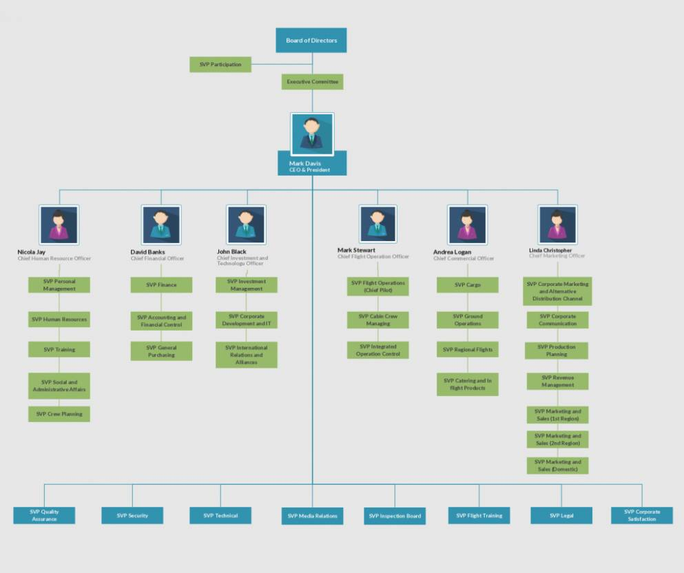 Organizational Chart And Hierarchy Template Download