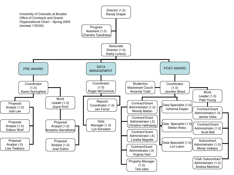 Organizational Chart Template Microsoft Word
