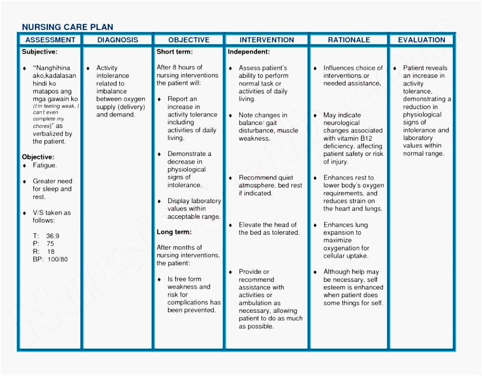 Palliative Nursing Care Plan Template