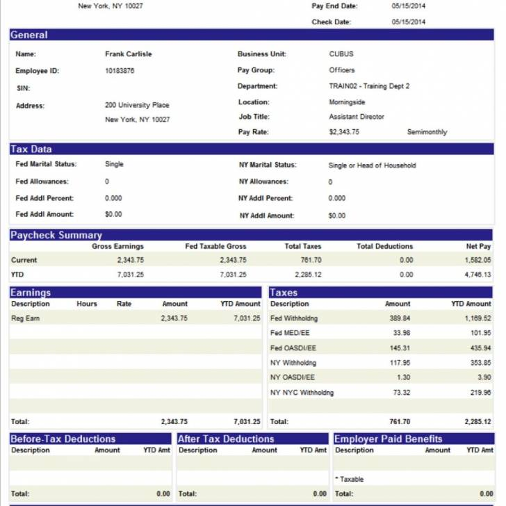 Pay Statement Template Uk