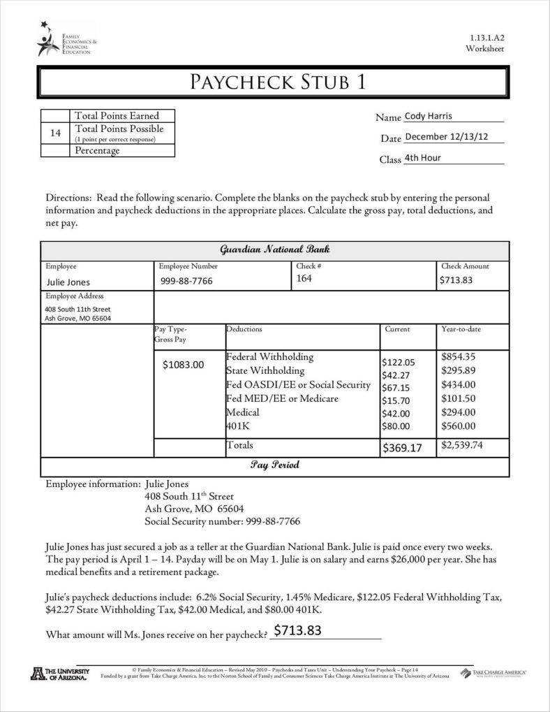 Payroll Check Stubs Template