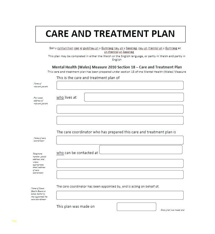 Physical Therapy Treatment Plan Examples