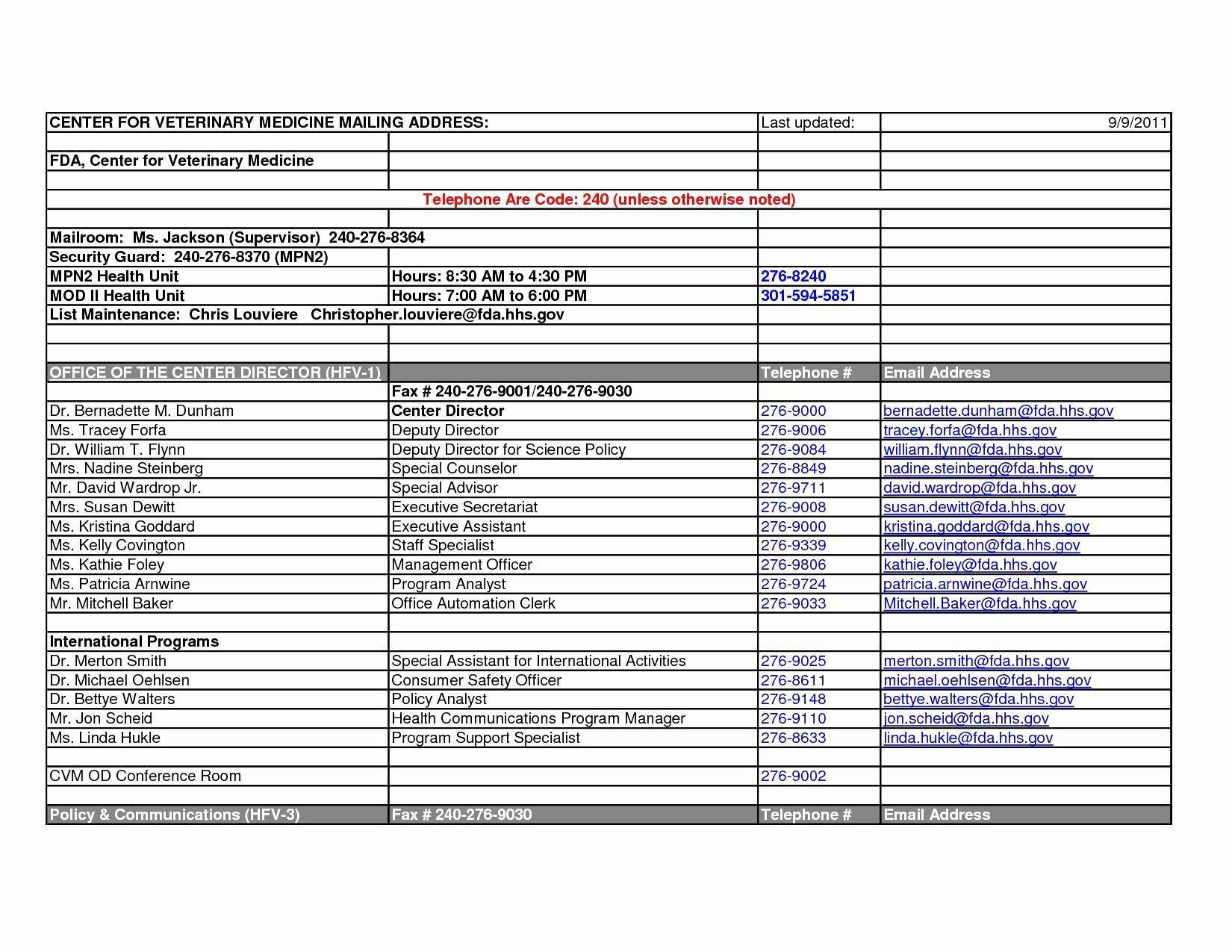 Police Department Organizational Chart Template