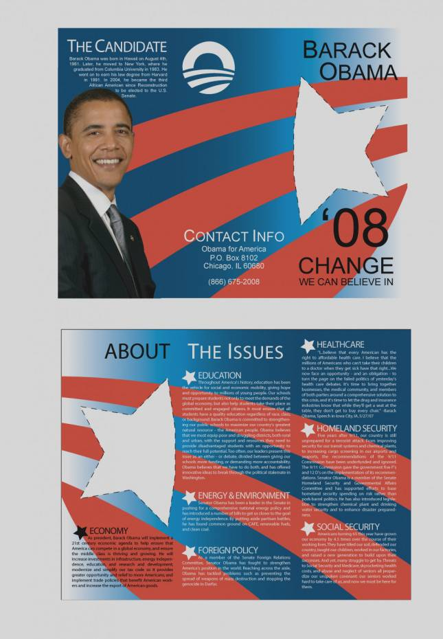 Political Brochures Templates