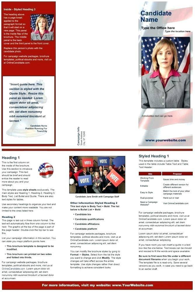 Political Party Brochure Template