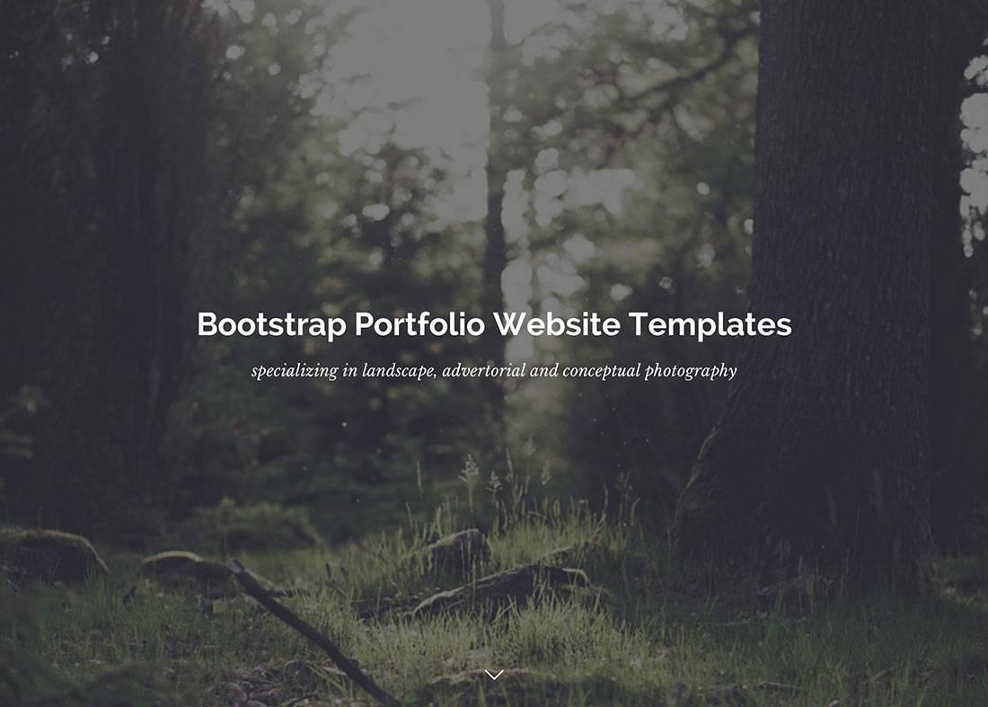 Portfolio Website Templates Html5