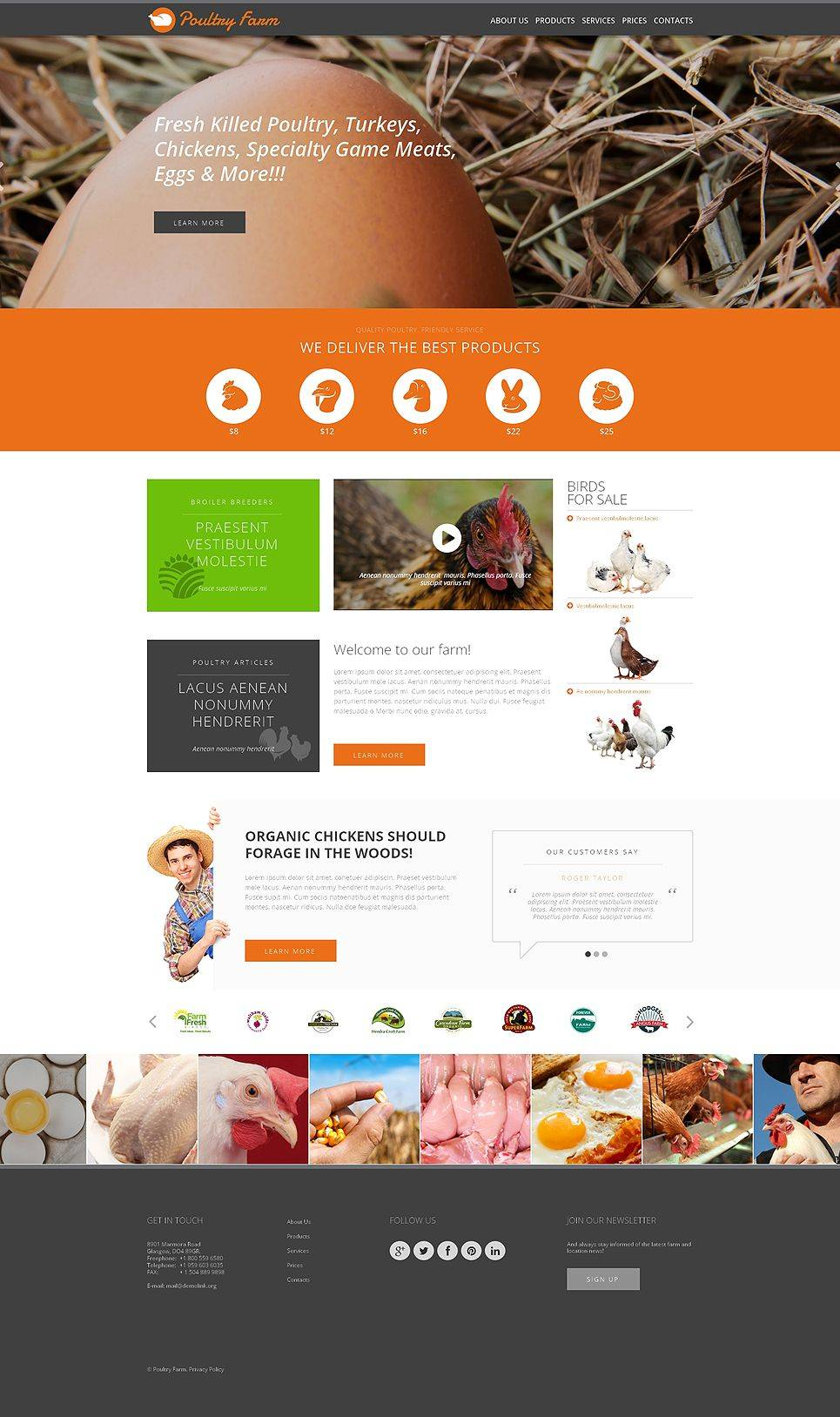 Poultry Website Template Themeforest