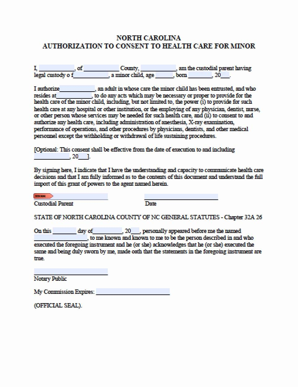 Power Of Attorney Form Texas Child Care