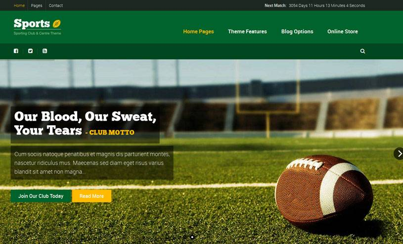 Premium WordPress Sports Templates