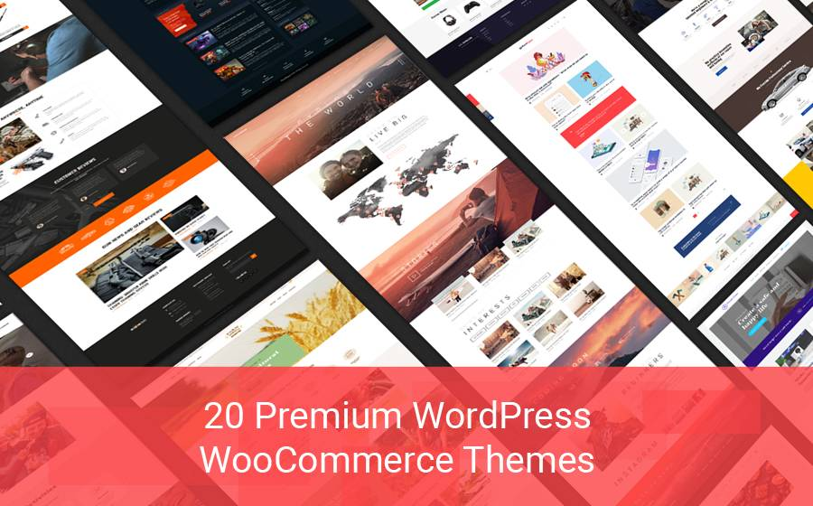 Premium WordPress Themes For Ecommerce