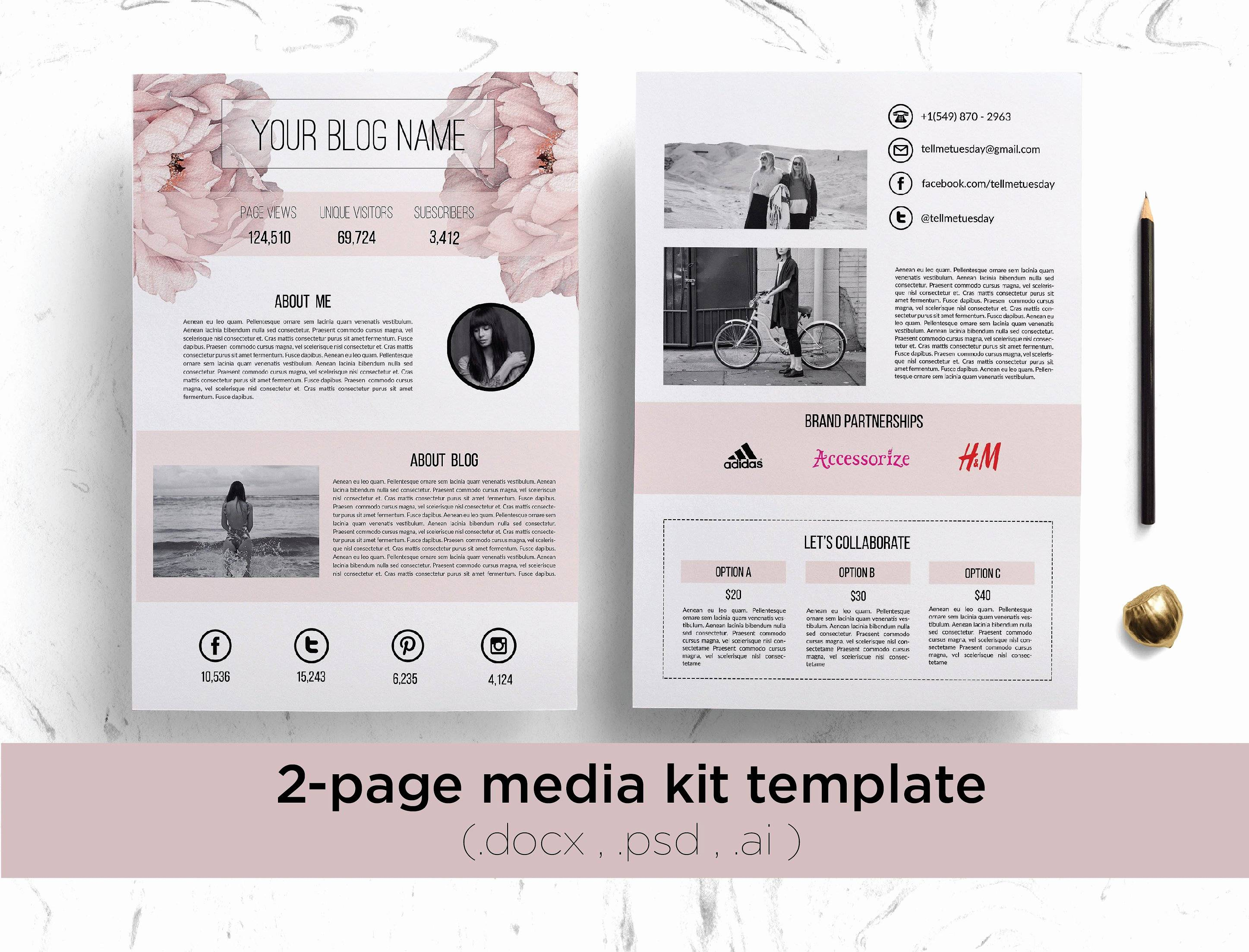 Press Kit Template Free Download