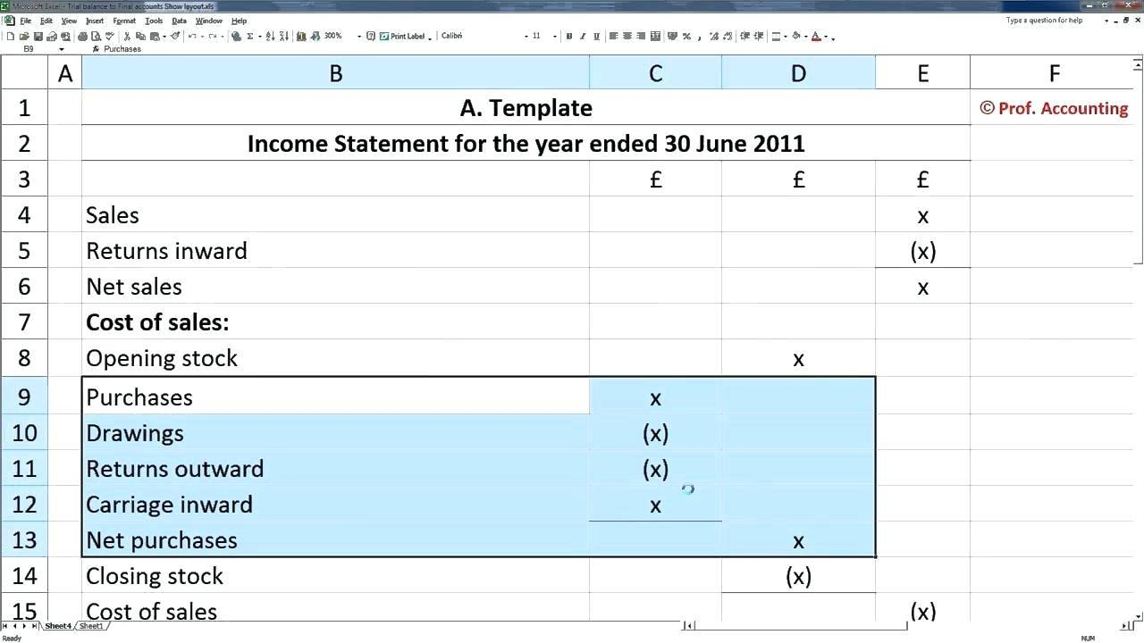Pro Forma Profit And Loss Template