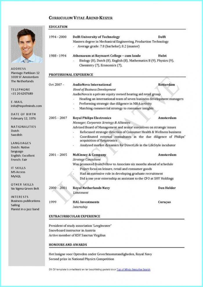 Professional Curriculum Vitae Template Free