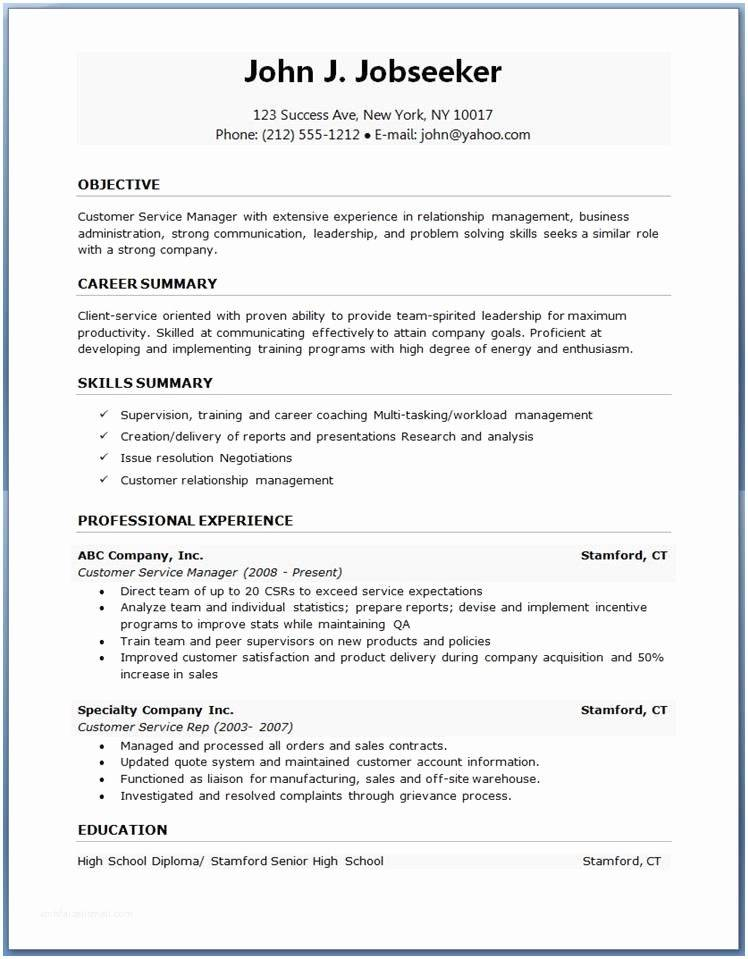 Professional Cv Template Word Doc