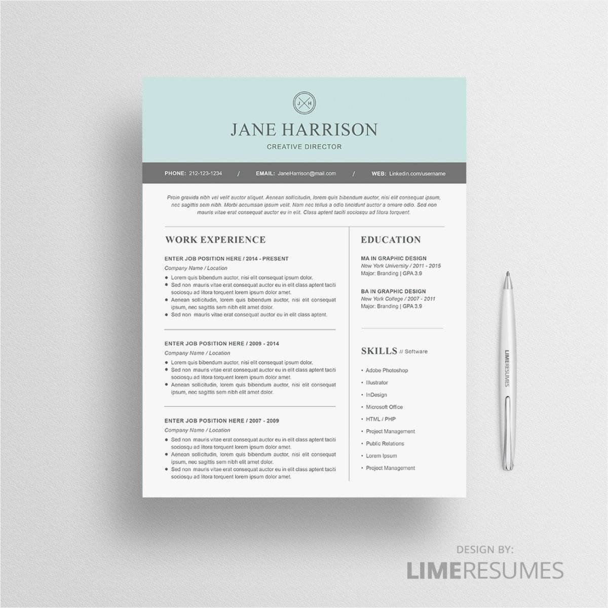 Professional Cv Template Word South Africa