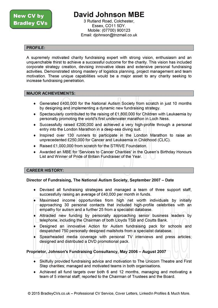 Professional Resume Example Free Blank Template