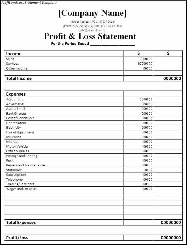 Profit And Loss Statement Balance Sheet Example