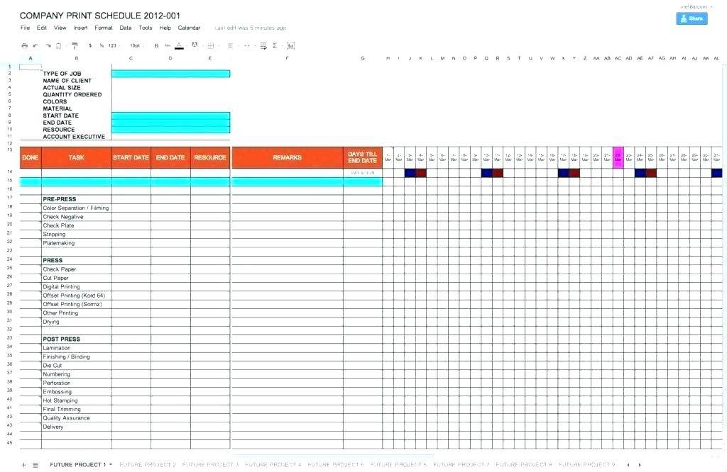 Program Management Dashboard Template