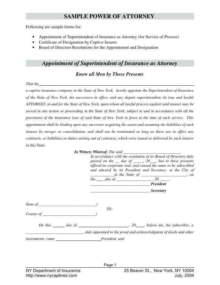 Real Estate Power Of Attorney Document