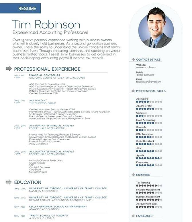 Resume Infographic Template Free Docx