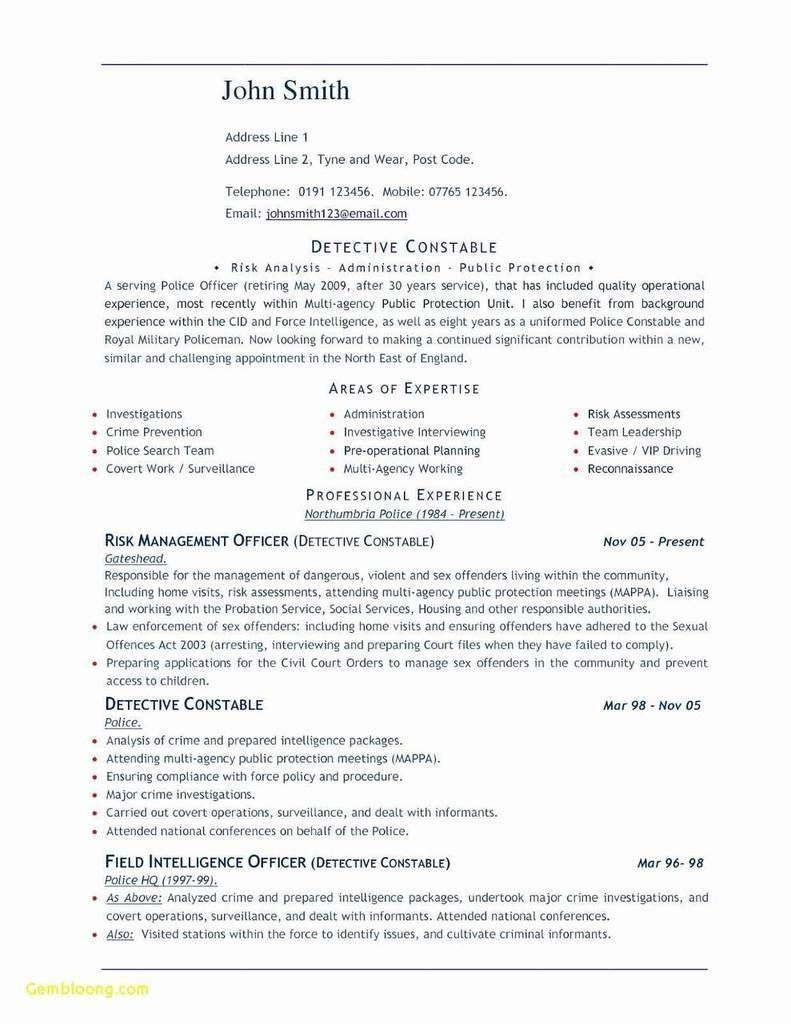 Resume Template With Photo Insert