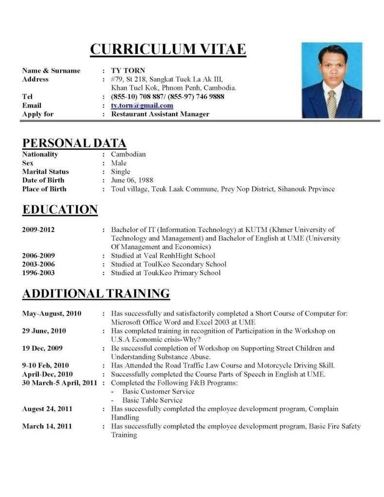 Resume Templates Editable Pdf