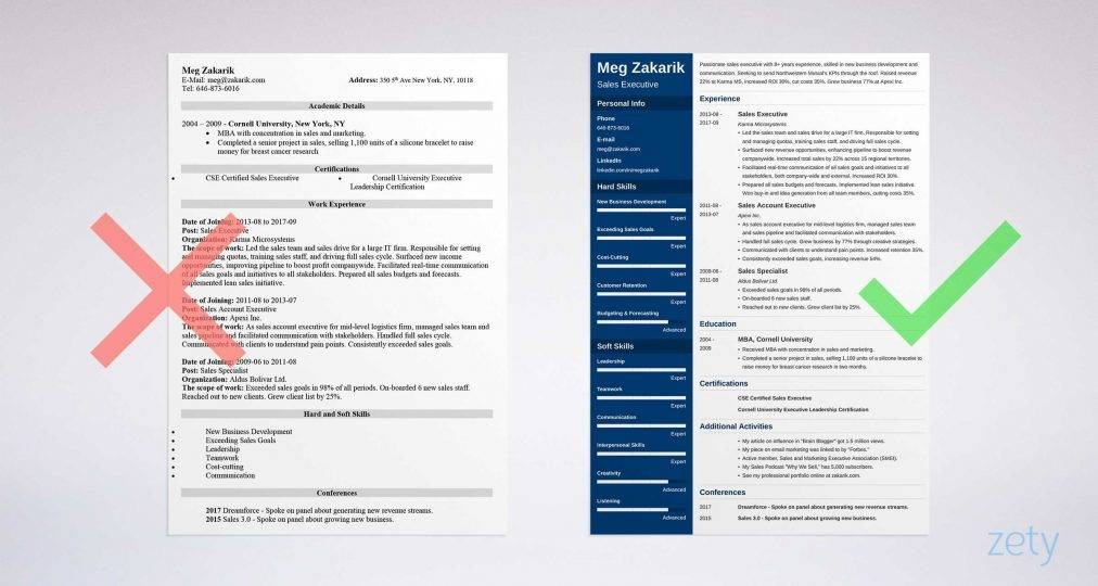 Resume Templates For Account Executives