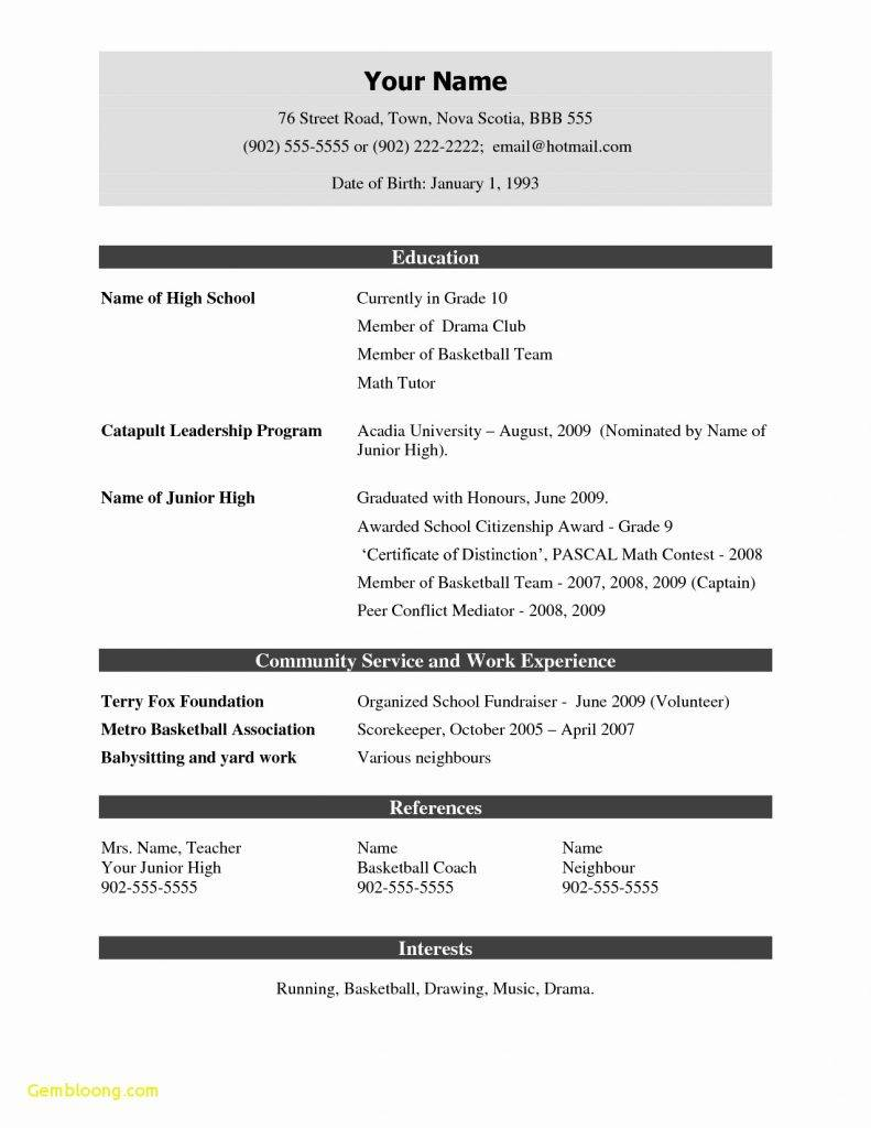 Resume Templates For Freshers Docx