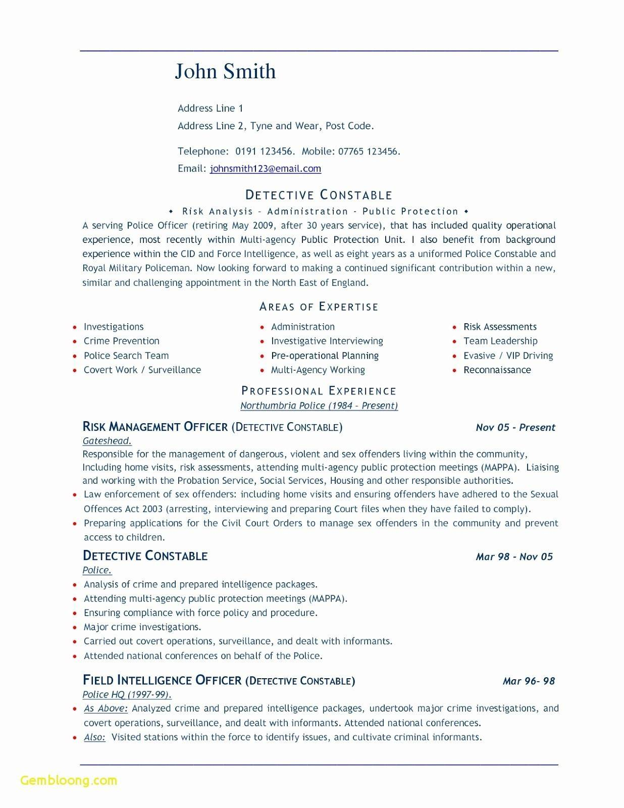 Resume Templates For Word 2013 Free