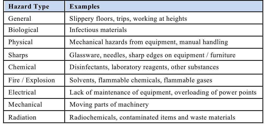 Risk Assessments Examples In Science Labs