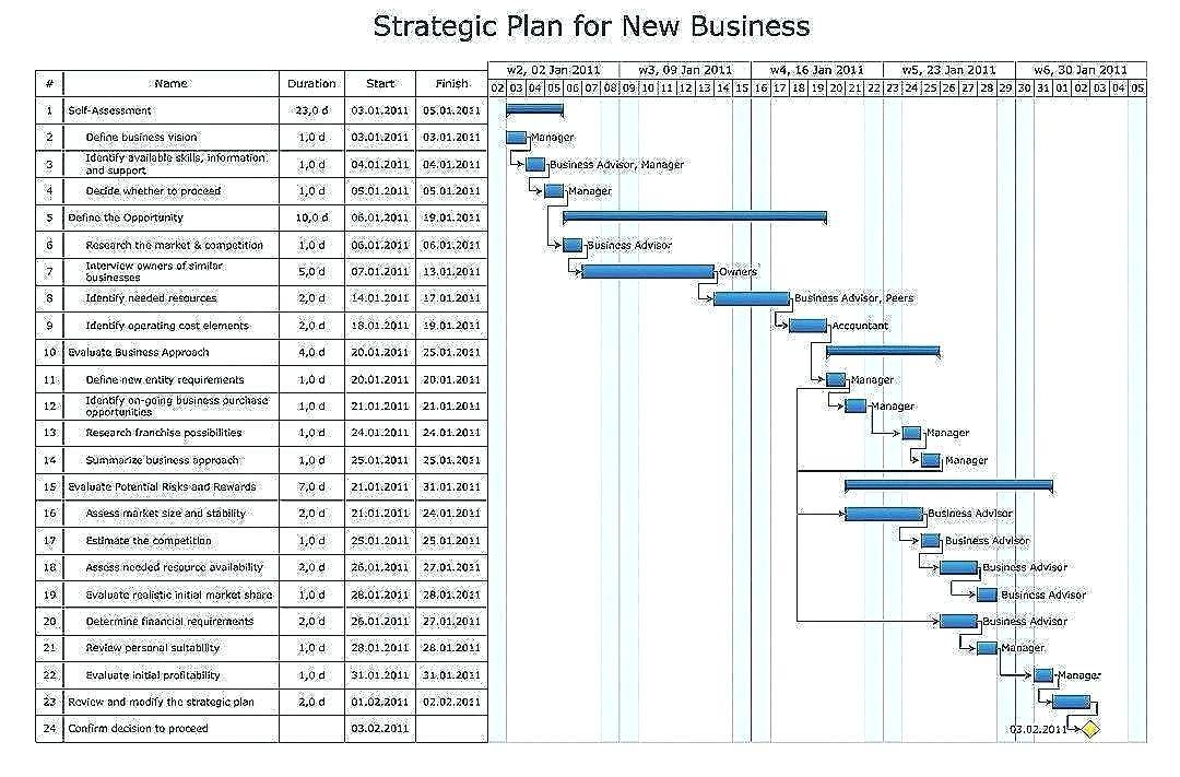 Risk Mitigation Action Plan Template