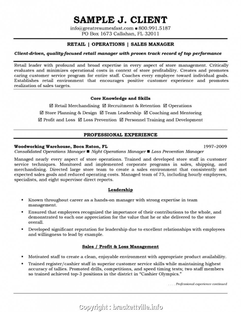 Sales Manager Resume Template Download
