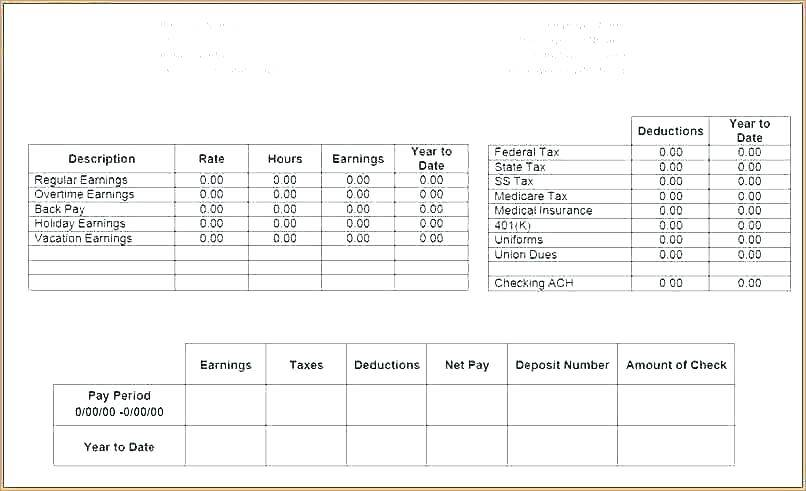 Sample Pay Stub Template Canada