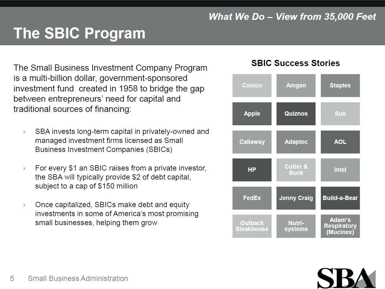 Sbagov Business Plan Template