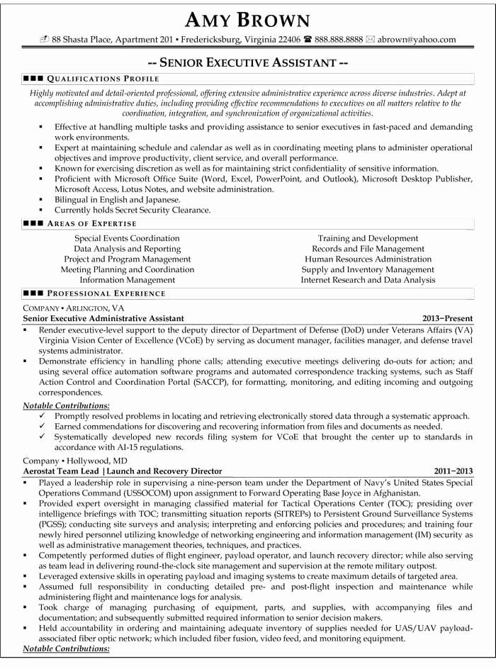 Senior Executive Assistant Resume Template