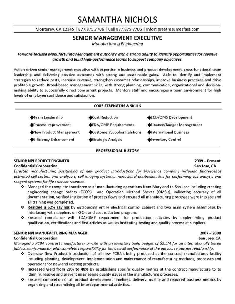 Senior Executive Resume Template Word