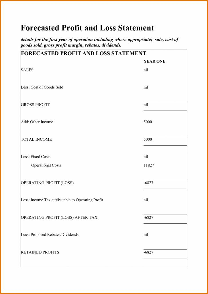 Small Business Profit And Loss Statement Form