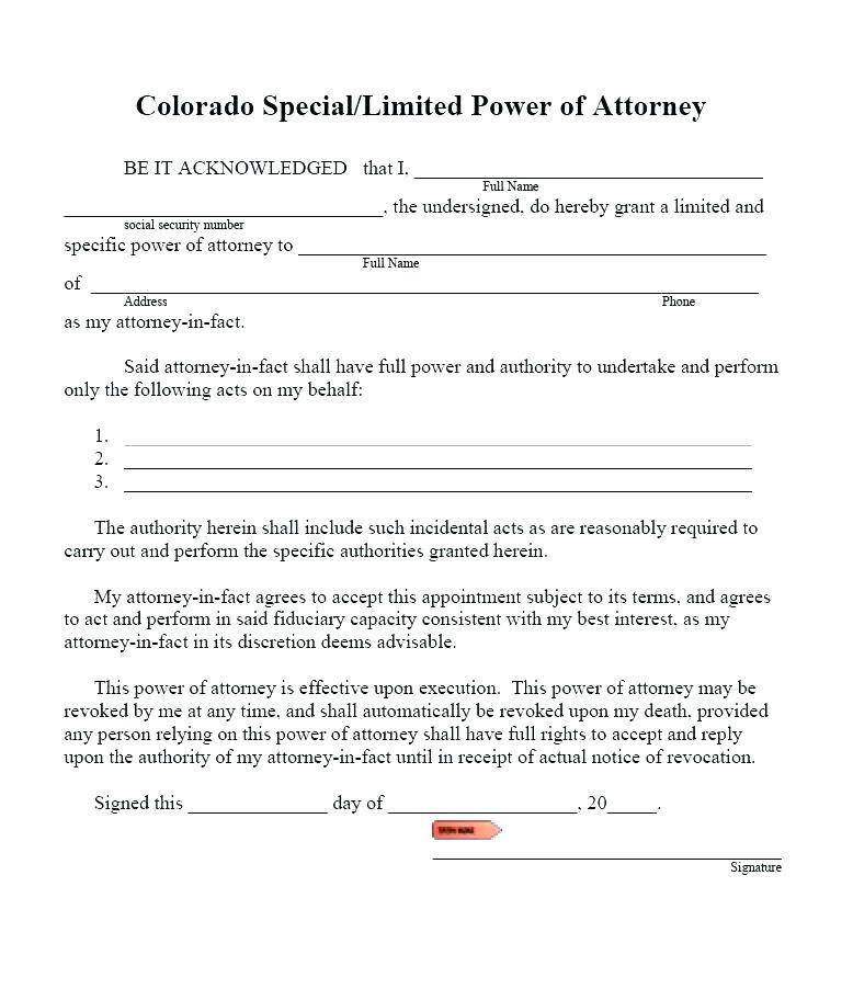 Special Power Of Attorney Word Document