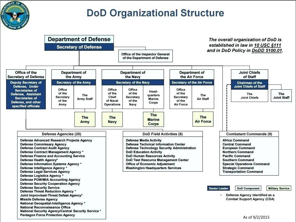 Staff Organisational Chart Template
